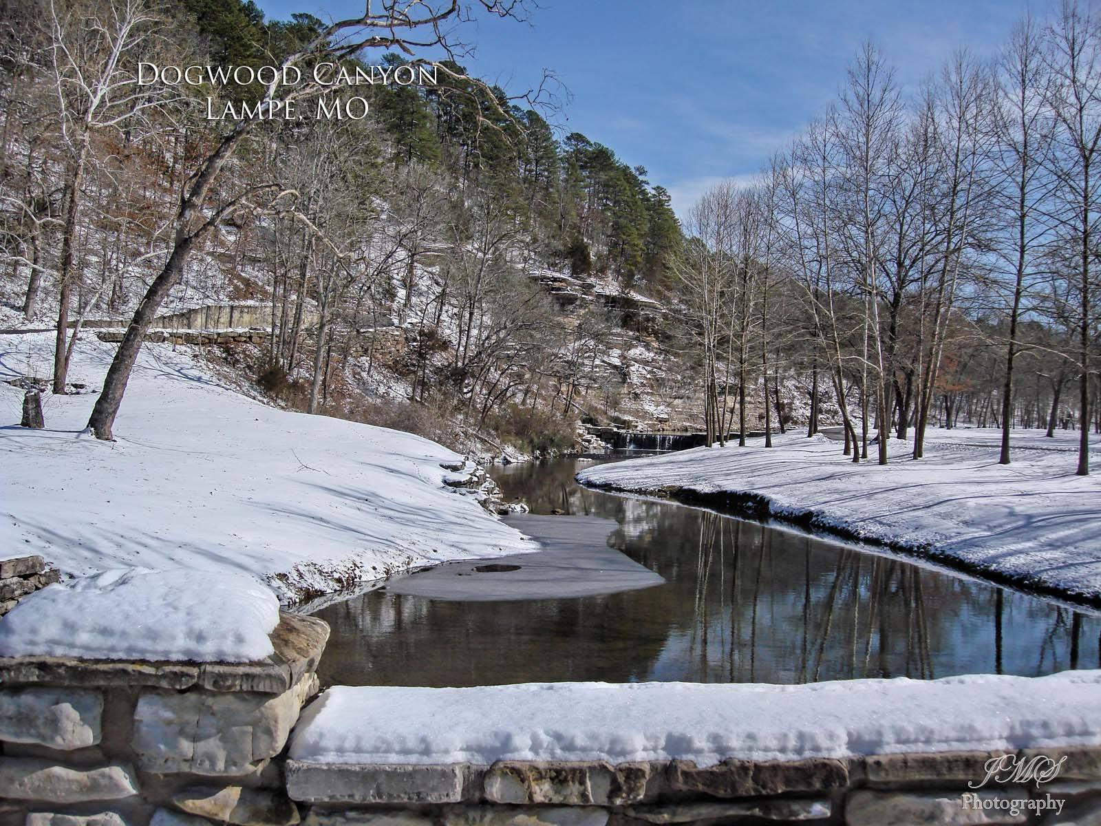 Snowy Dogwood Canyon