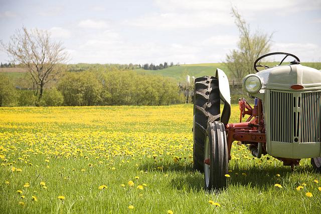 Dandelion Tractor
